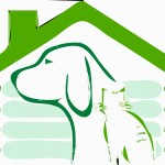 Tips on Choosing the Perfect Dog House