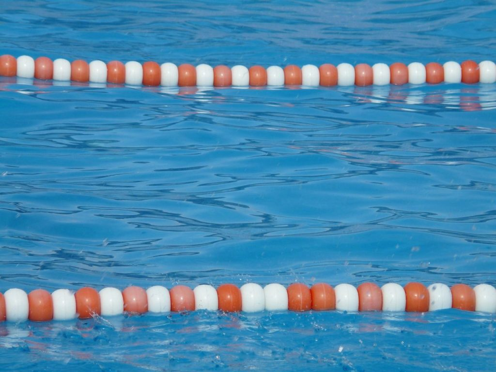 Chlorine 101 are chlorinated pools safe for your dog barkily for Chlorine in swimming pool water
